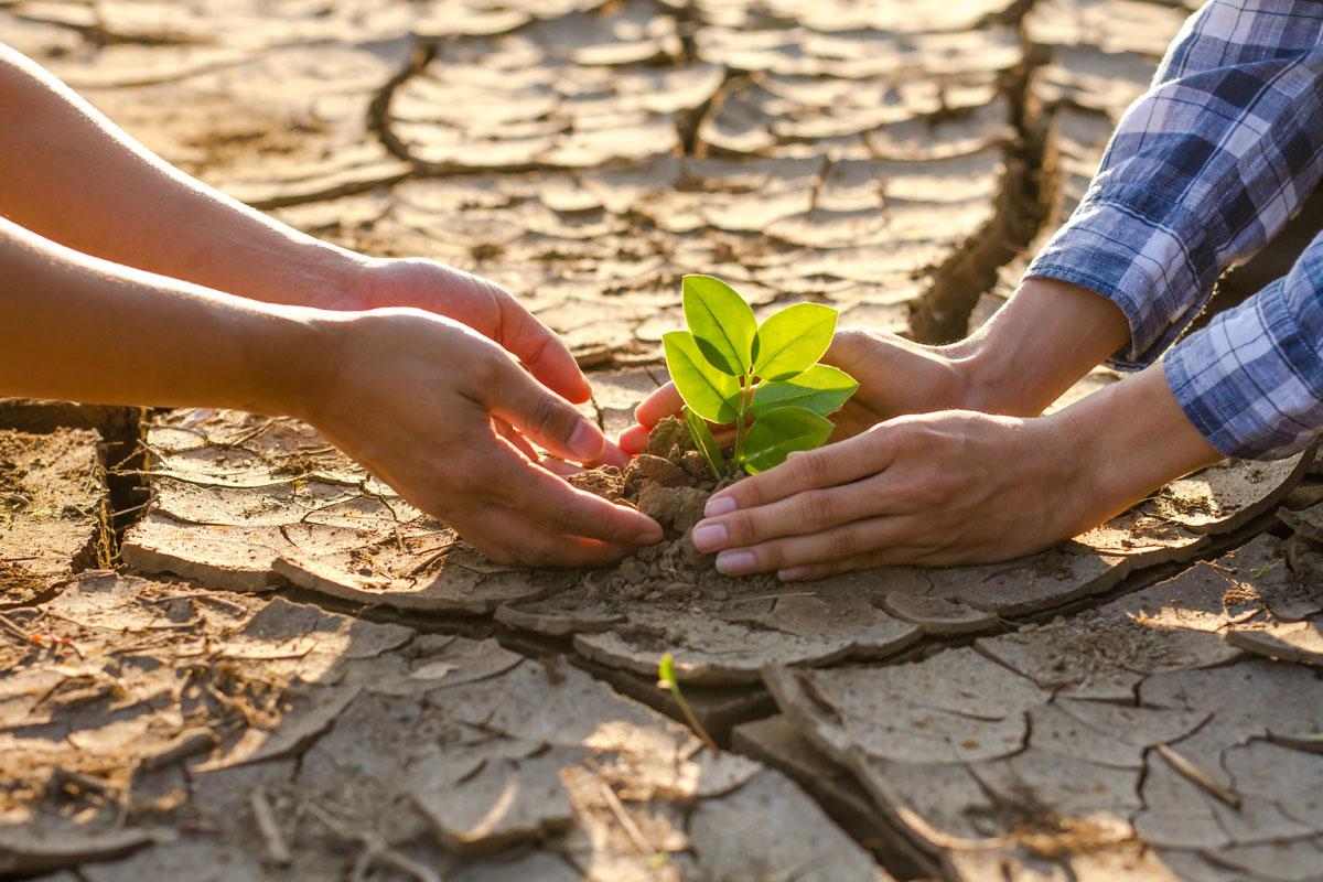 Ley-de-cambio-climatico-y-transicion-energetica.-Spin-Ingenieros